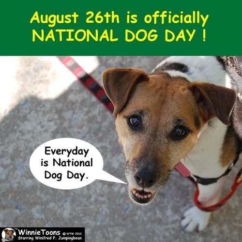 August 26th is officially National Dog Day