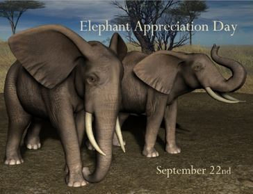Elephant Appreciation Day September 22nd