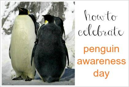 how to celebrate Penguin Awareness Day