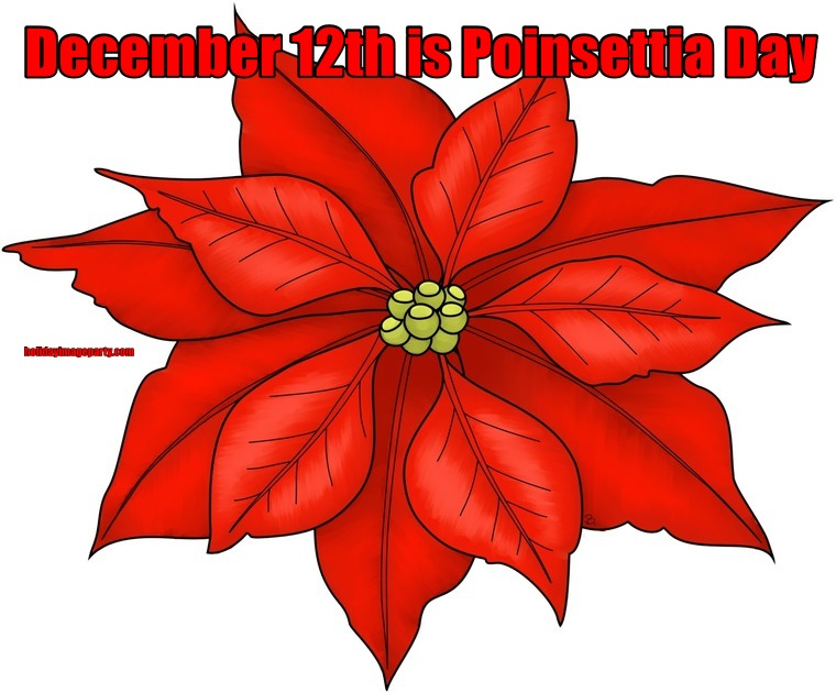 December 12th is Poinsettia Day