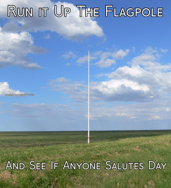 Run it Up The Flagpole  And See If Anyone Salutes Day