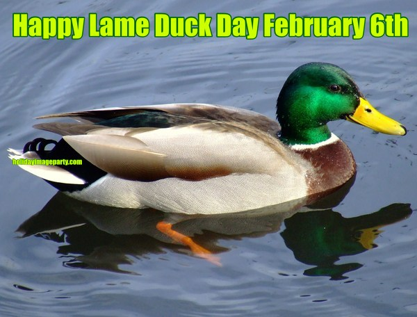 Happy Lame Duck Day February 6th