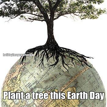 Plant a tree this Earth Day