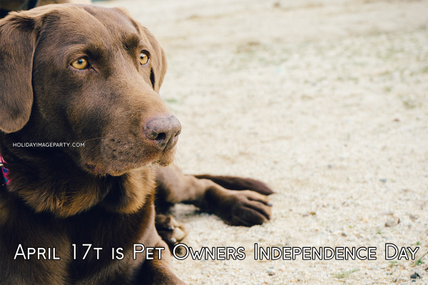 April 17t is Pet Owners Independence Day