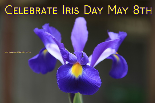 Celebrate Iris Day May 8th