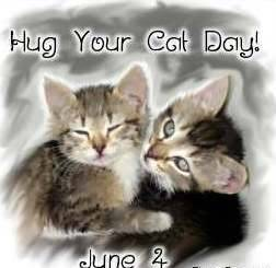 Hug your cat day!