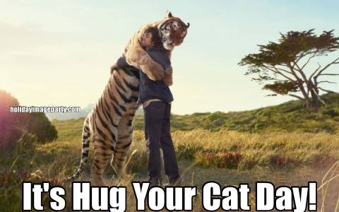 It's Hug Your Cat Day!