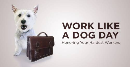 Work Like a Dog Day. Honoring your hardest workers