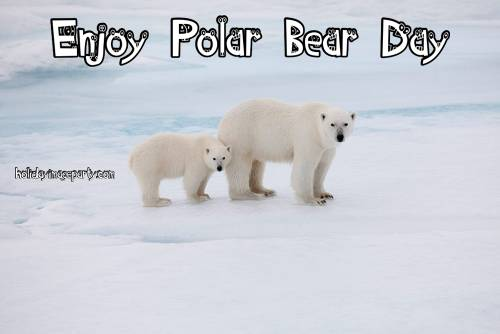 Enjoy Polar Bear Day