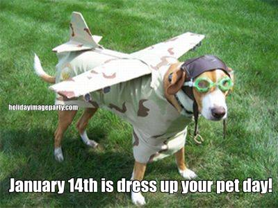 January 14th is dress up your pet day!