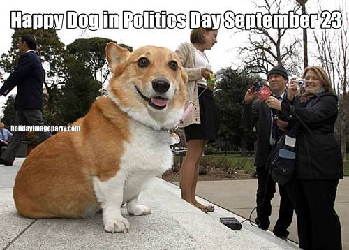Happy Dog in Politics Day September 23