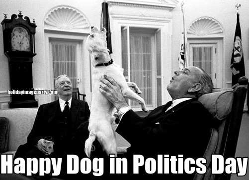 Happy Dog in Politics Day