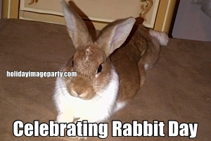 Celebrating Rabbit Day