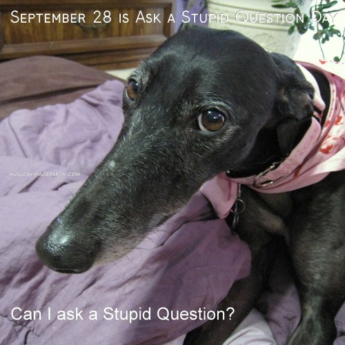 September 28 is Ask a Stupid Question Day