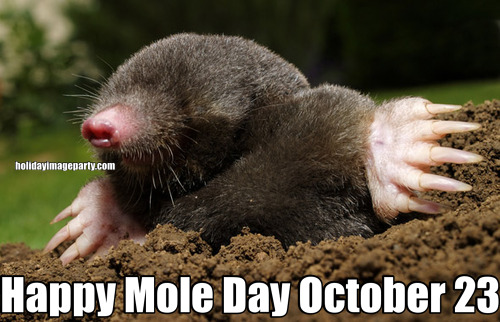 Happy Mole Day October 23