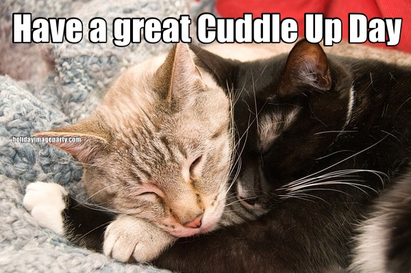 Have a great Cuddle Up Day