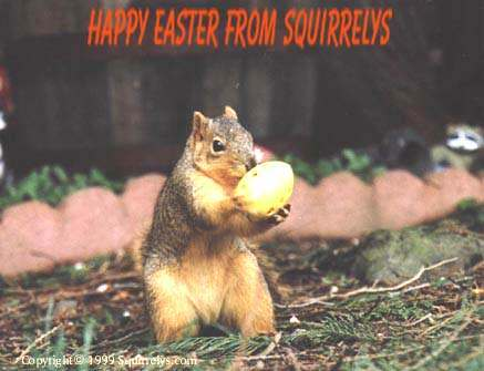 Happy Easter From Squirrelys