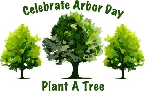 Celebrate Arbor Day Plant A Tree