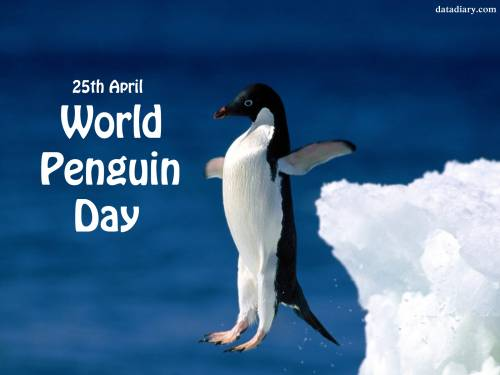 25th April World Penguin Day