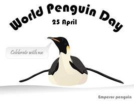 World Penguin Day 25th April