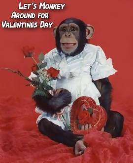 Let's monkey around for Valentine's Day