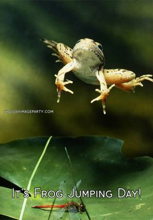 It's Frog Jumping Day!