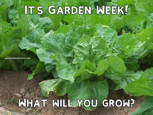 It's Garden Week! What will you grow?