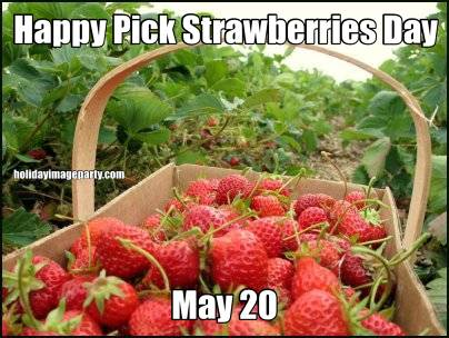 Happy Pick Strawberries Day May 20