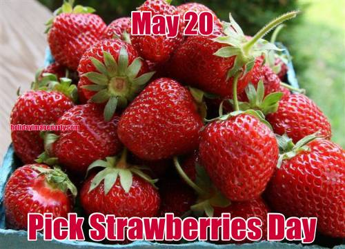 May 20 Pick Strawberries Day