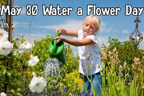 May 30 Water a Flower Day