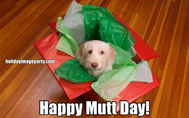 Happy Mutt Day!