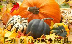 Fall is finally here!!