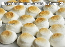 Happy Marshmallow Toasting Day August 30