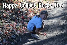 Happy Collect Rocks Day