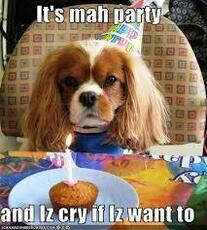 It's mah party and Iz cry if Iz want to