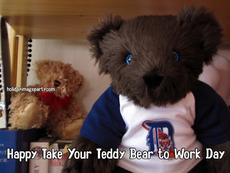 Happy Take Your Teddy Bear to Work Day