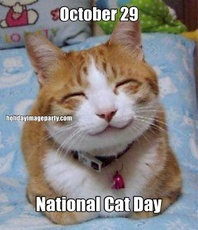October 29 National Cat Day
