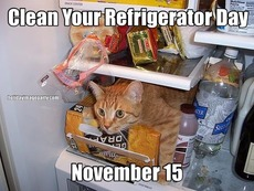 Clean Your Refrigerator Day November 15