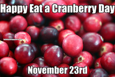 Happy Eat a Cranberry Day November 23rd