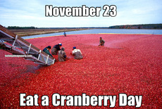 November 23 Eat a Cranberry Day
