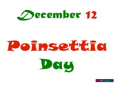 December 12 Poinsettia Day