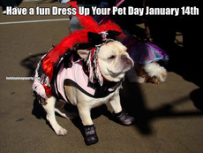 Have a fun Dress Up Your Pet Day January 14th