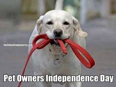 Pet Owners Independence Day