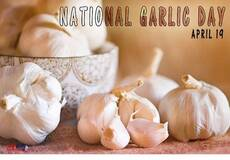 National Garlic Day April 19