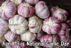 April 19 is National Garlic Day