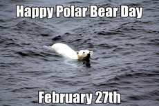 Happy Polar Bear Day February 27th