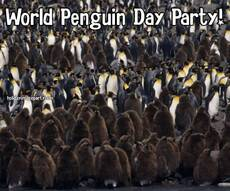 World Penguin Day Party!