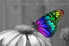 It's Learn About Butterflies Day!