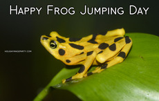 Happy Frog Jumping Day