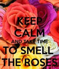 Keep calm and take time to smell the roses
